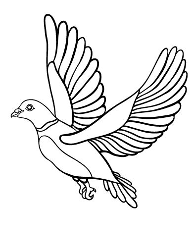 Printable Dove Coloring Page Free Pdf Download At Http
