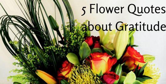 5 Flower Quotes about Gratitude