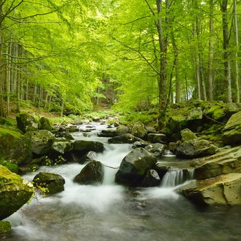 Fototapet Soft Water Stream