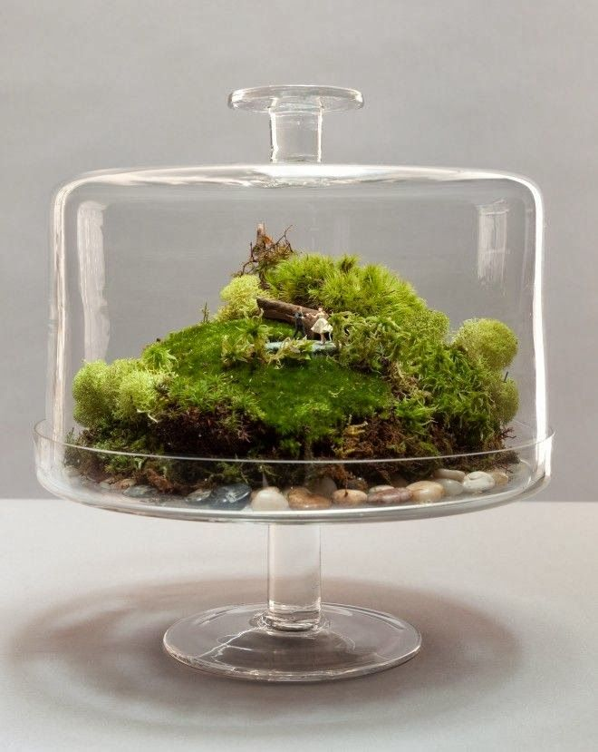 1413 best Terrarium images on Pinterest Miniature gardens - ikea küchen beispiele