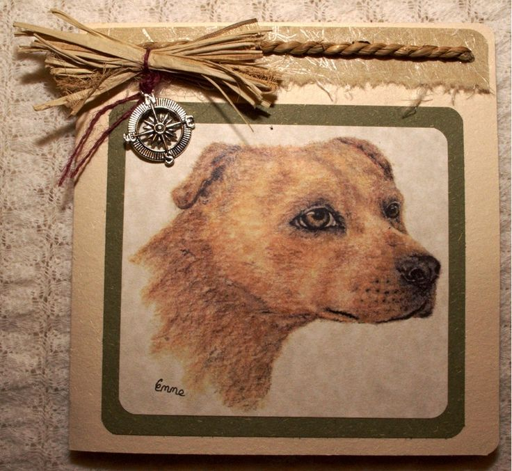 Nautical male Birthday Greeting Card. Pencil drawing of a loyal dog. Handmade cotton paper, sea grass rope, raffia, compass charm. OOAK.