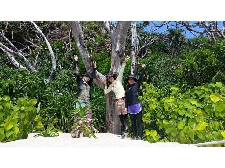 【沖縄・国頭村安田】無人島へ行こう!SUPクルージング+シュノーケリングの紹介画像