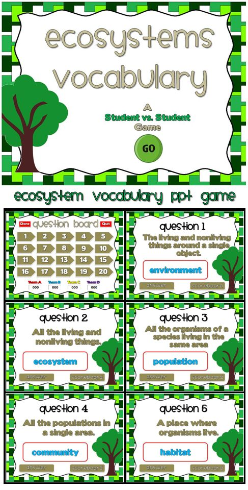 ecosystems a vocabulary ppt game vocabulary words definitions and you ve. Black Bedroom Furniture Sets. Home Design Ideas