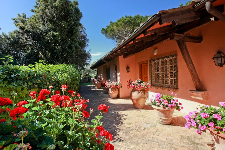 Villa Il Pino is a beautiful peaceful small 18-hectare estate, for a vacation rentals in Tuscany coast, which consists of a main villa, a detached guest annex, a 20-metre swimming pool, 2 hectares of landscaped gardens and 16 hectares of olive groves, an orchard and Mediterranean maquis.