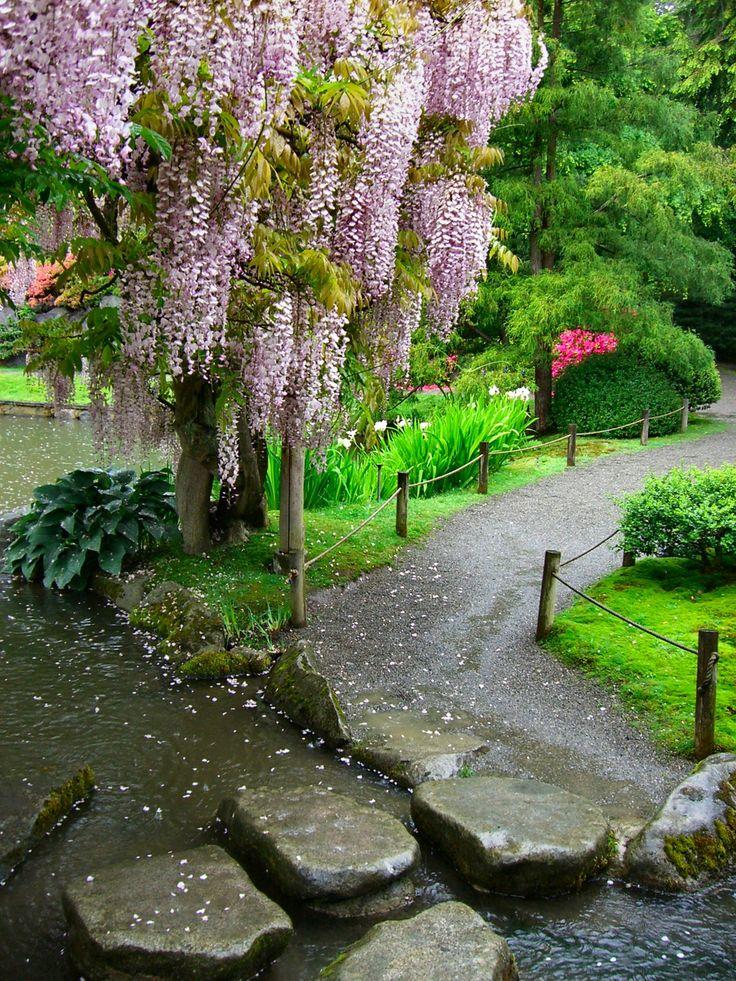 Wonderful A Photo Assignment: Flowers. Zen GardensJapanese GardensSeattle Japanese  GardenWisteria ArborOrganic ...