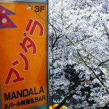 隠れ家ダイニング マンダラ ~MANDALA~ 渋谷店(渋谷/ネパール料理) - ぐるなび