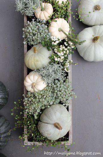 Herbstdekoration Baby Boos