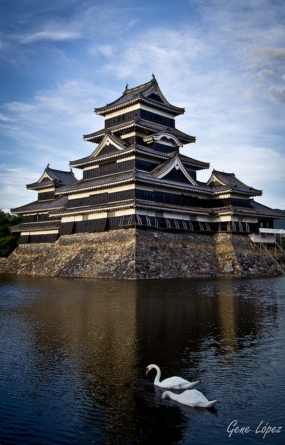 Matsumoto castle, Japan. I love that sharp line that runs from the roof to the water... It's like a crease. So precise.