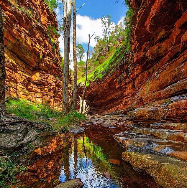 Alligator gorge in Mt. Remarkable National Park. A good weekend trip from Adelaide.