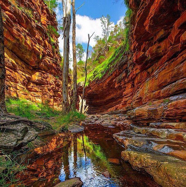 alligator gorge,South Aus