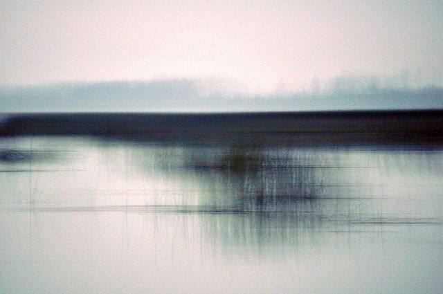 rerylikes:  russell.tomlin.Morning Light: Brightening on Water with Grasses (viastardustcapriccio:isaac-lonetree)