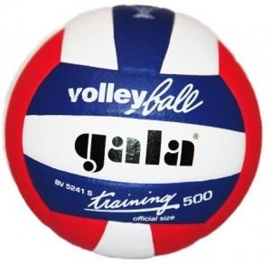 Piłka siatkowa Gala BV5241SE 500gr - piłka siatkowa klejona, ciężka (500 gr) przeznaczona głównie dla rozgrywających i przyjmujących. $32