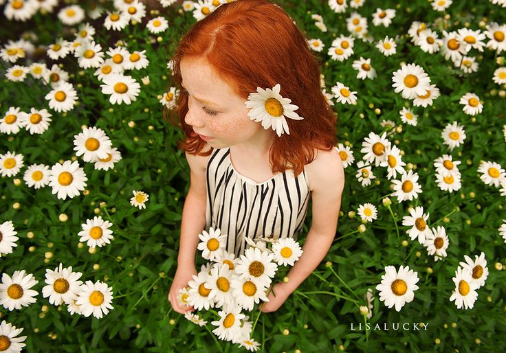 """Daisier and a """"Ginger"""" what could be Better! Would Love to have this picture!"""