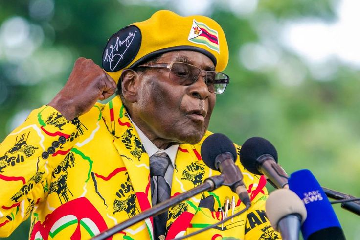 Zimbabwe President Robert Mugabe addresses members of his party gathered at their headquarters on Nov. 8. Mr. Mugabe, the world's oldest head of state, aims to win one more election which would propel him into a fifth decade of rule.