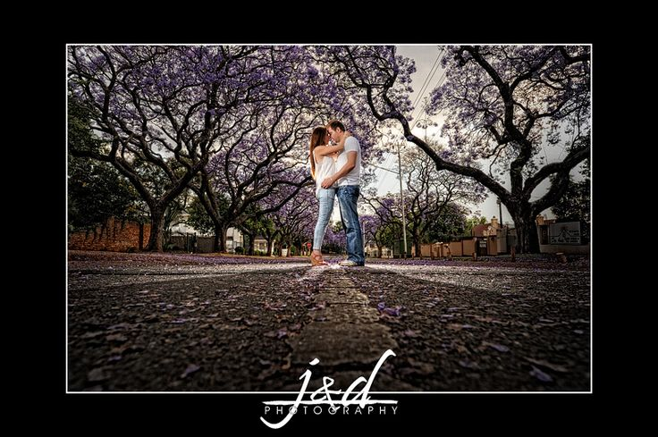 Engagement session with Jacaranda trees