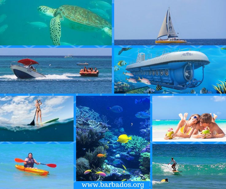 So many wonderful ways to enjoy the warm, clear waters around Barbados