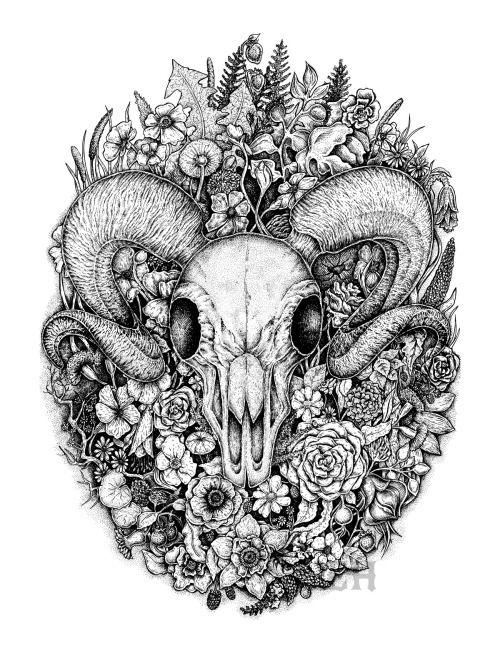 Ram skull among flowers and leaves black and white ink artwork
