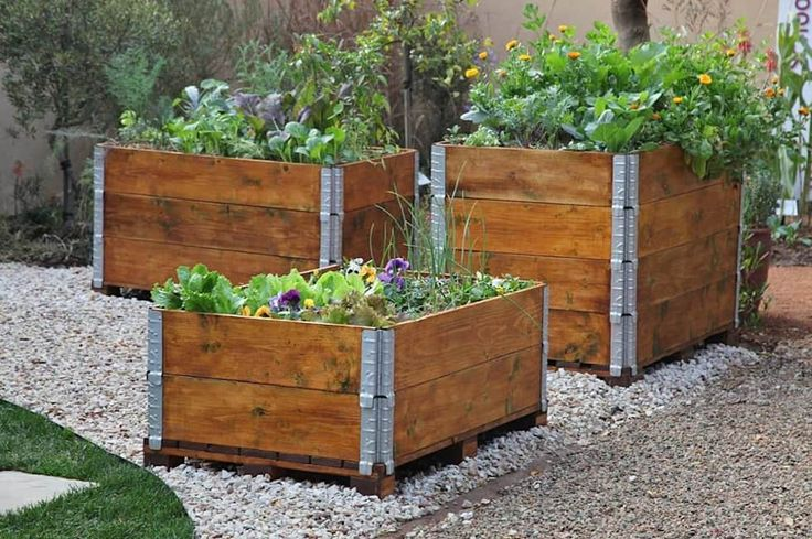 Organic vegetable and herb garden in recycled pallets planter: industrial Garden by Acton Gardens