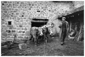 Raymond Depardon - La terre des paysans