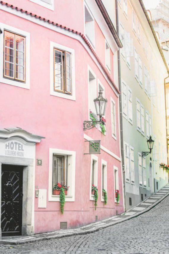 Blush Pink Decor Wall Art