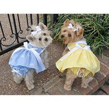 Springtime Denim Daisy Dog Dress | Dog Dresses at GlamourMutt.com