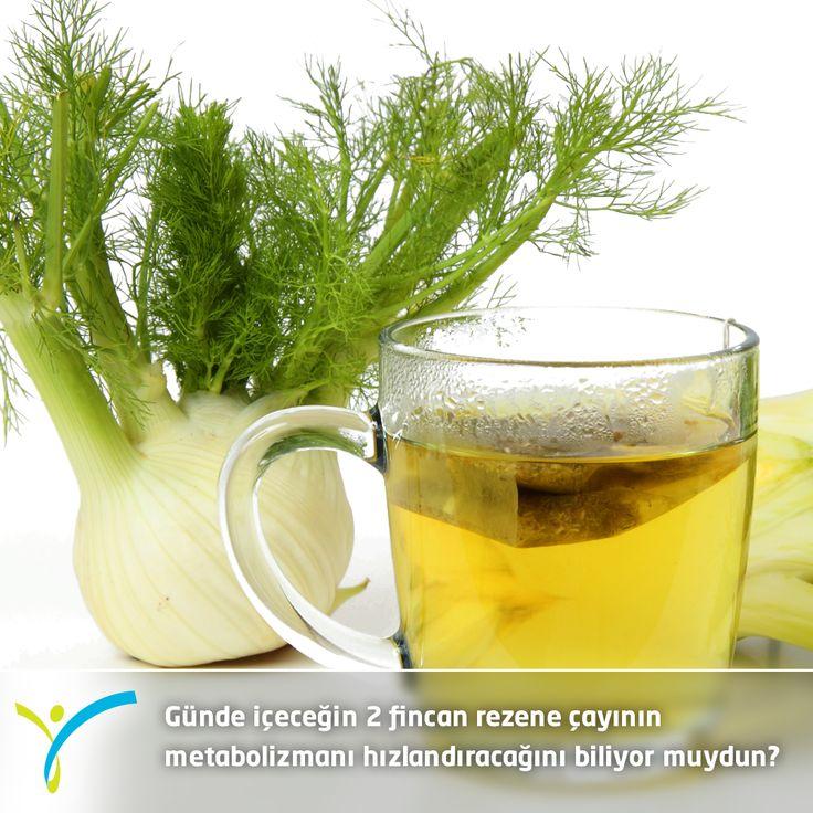 Günde içeceğin 2 fincan rezene çayı metabolizmanı hızlandırarak pek çok metabolik fonksiyonunu düzenler.