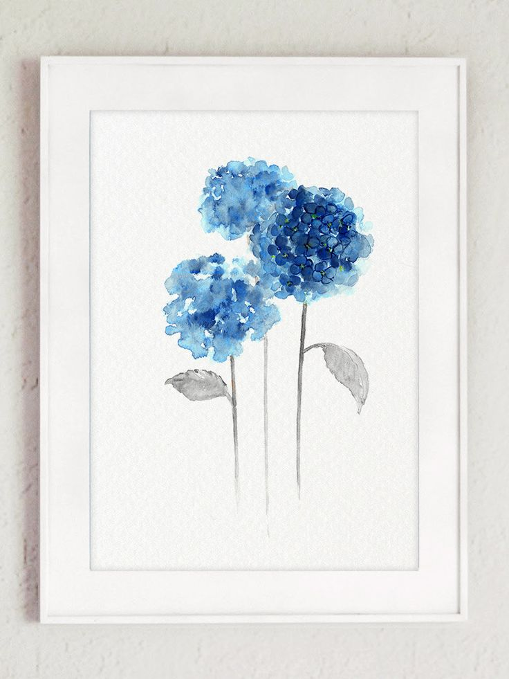 Les 25 meilleures id es de la cat gorie hortensia bleu - Terre pour hortensia bleu ...