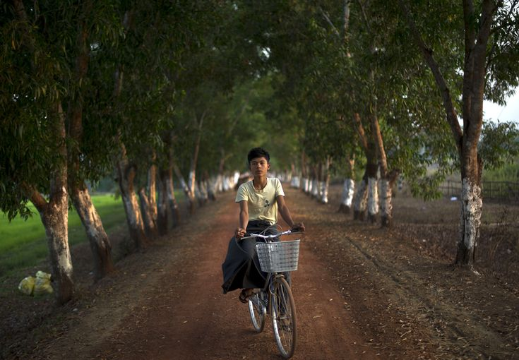 Pedal power: Bicycles, February 20, Bike Rides, Boys, 2012, Bicycle Photography, Rice Fields