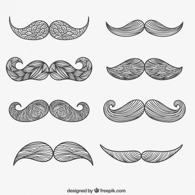 Dibujado mano del bigote vectorial