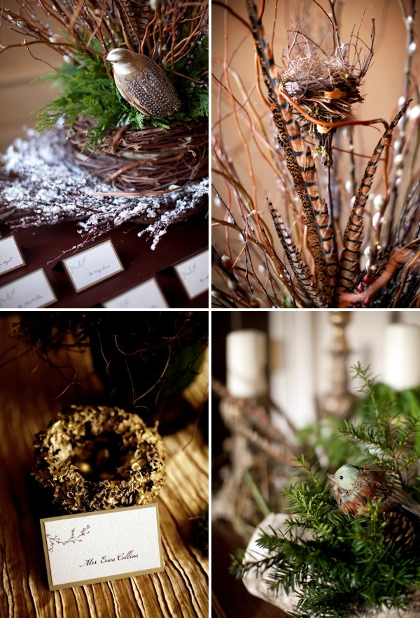 Best images about pheasant feathers on pinterest