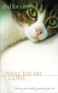DVD FOR CATS - WHILE YOU ARE GONE - CAT CARE VIDEO NEW
