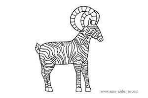 dibujos para colorear cabra zebra