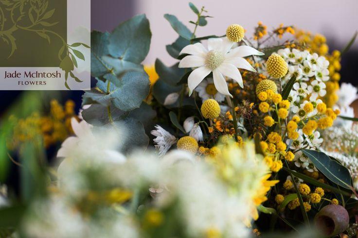 We love natives. Flannel flower, dollar gum, wattle... bright and beautiful. www.jademcintoshflowers.com.au www.somethingbluephotography.com.au
