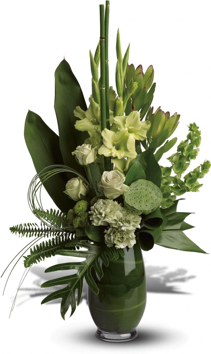 Turn her friends green with envy! This lush, Zen arrangement mixes serene shades of green in a unique, leaf-lined vase that's sure to steal the limelight. Exotic elements include a lotus flower pod, xanadu philodendron leaf, bear grass and bells of Ireland.