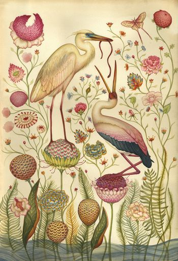 old botanical illustration