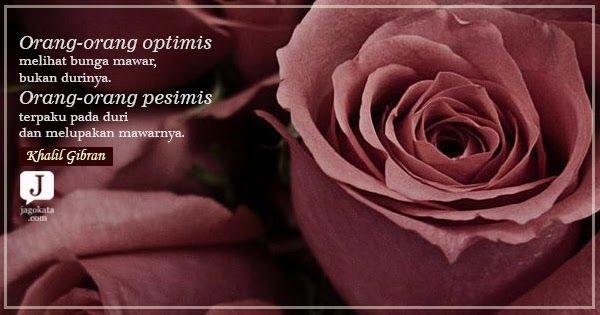 Menakjubkan 27 Quotes Tentang Bunga Mawar Layu Khalil Gibran Orang Orang Optimis Melihat Bunga Mawar Bukan Tips Agr Bunga Mawar Bunga Menggambar Bunga Mawar