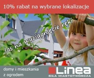 banner AdWords dla firmy Linea