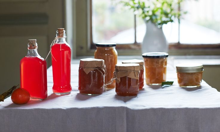 """Cook Residency: Homemade preserves make inexpensive presents that can last for ages. These recipes for an apple and ale chutney, a rhubarb and ginger """"shrub"""" and clementine and whisky marmalade are sure to be gratefully received ..."""