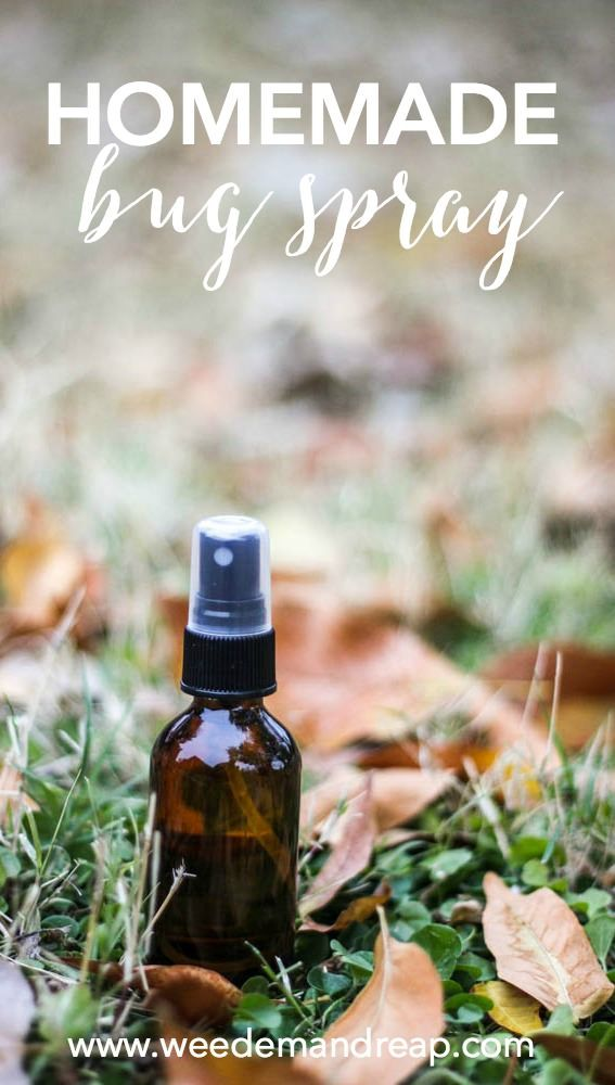 Homemade Bug Spray Recipe - This Homemade Bug Spray Recipe works, ya'll! During the summer months, bugs can come out in full force. Here in Arizona, we're lucky that although we have the heat,