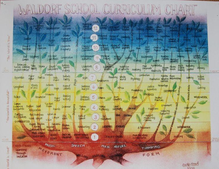 Waldorf ~ Curriculum ~ chart