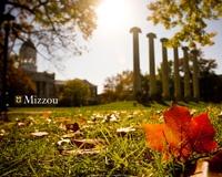 MizzouMizzou Homecoming, Mizzou Rah, Mizzou It, Commissioning Zoo, Mizzou 3
