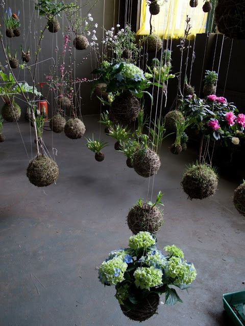 These hanging gardens are so gorgeous!