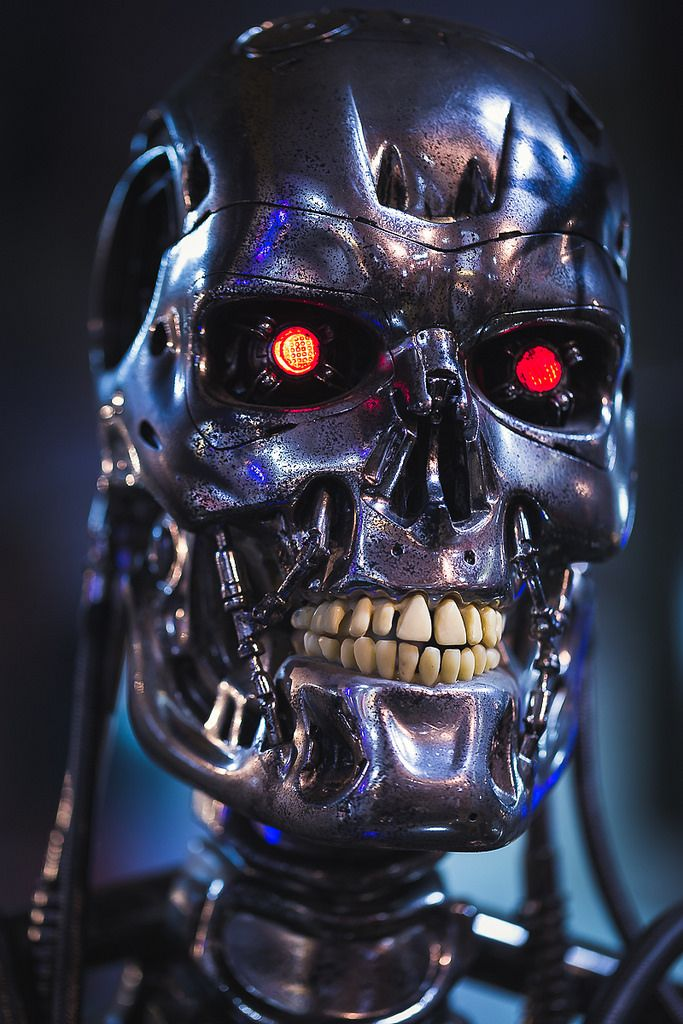 The Terminator 1...T 800 Terminator Skull