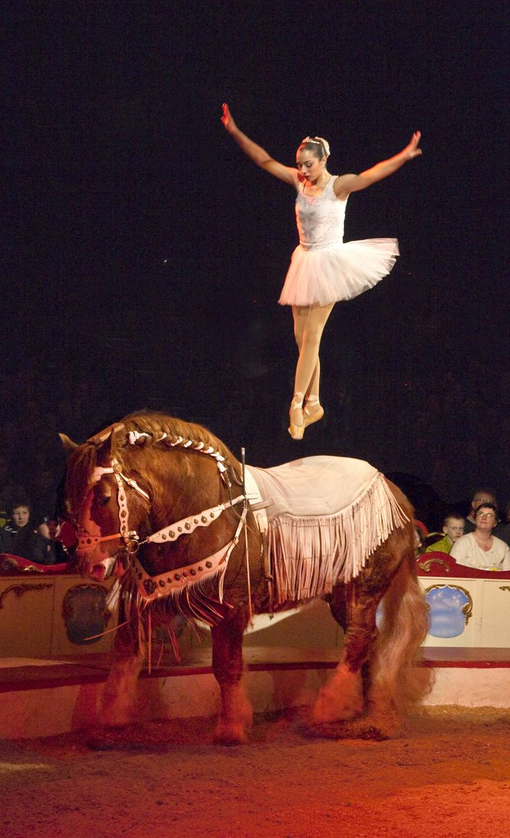 That takes skill and hard work I can't believe the horse can do that oh and the girl is good too