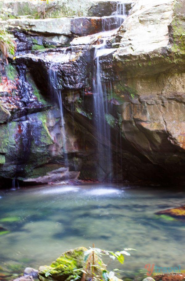 Carnarvon Gorge National Park, Queensland, Australia