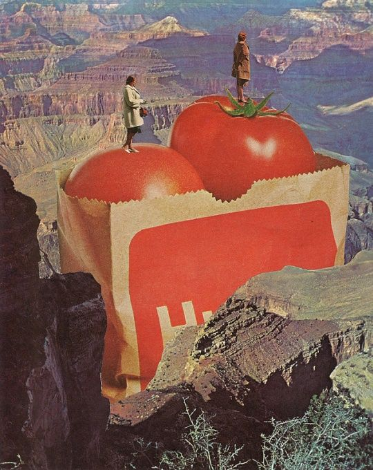 Jesse Treece Collages Are Surreal Landscapes   Mutantspace