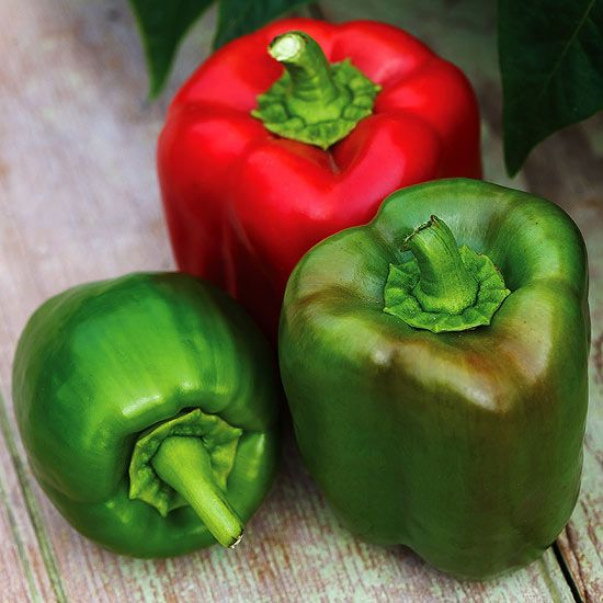 554 Best Grow Your Own Produce Images On Pinterest