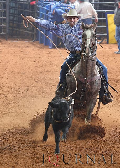 roping calf cowboys rodeo riding horse horses down tie cowgirl cowboy quarter bobby lewis western rope roper dummy head tying