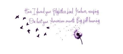 Flightless bird american mouth tumblr - photo#2