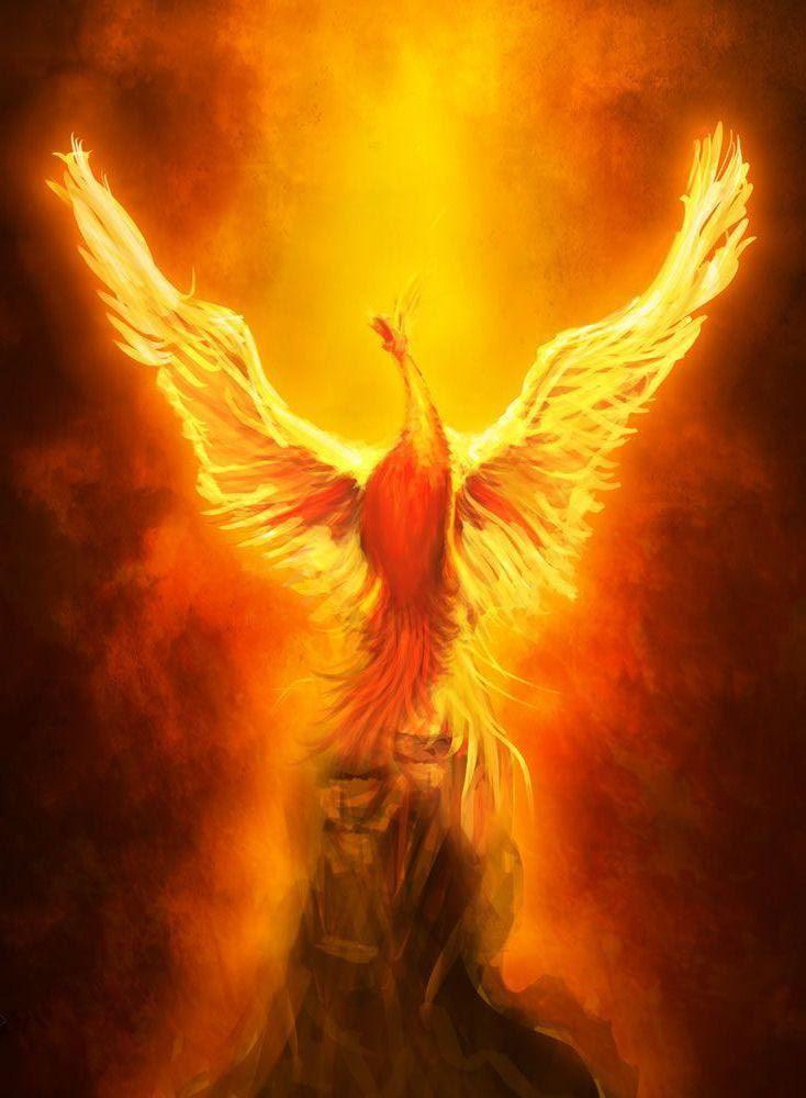 Phoenix Wallpaper 158 Phoenix images Phoenix art Phoenix painting